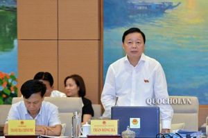 'Bộ trưởng, Chủ tịch tỉnh không nên là đại biểu Quốc hội'