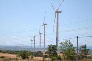 3 nhà đầu tư mua hết hơn 4 triệu cổ phần Phong điện Thuận Bình