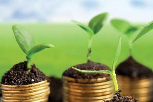 Nỗ lực đáng ghi nhận của Việt Nam trong thúc đẩy tài chính xanh
