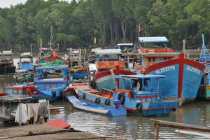 TPHCM sẵn sàng phương án di dời dân xã đảo Thạnh An, huyện Cần Giờ