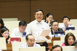 Bộ trưởng không nên là đại biểu Quốc hội?