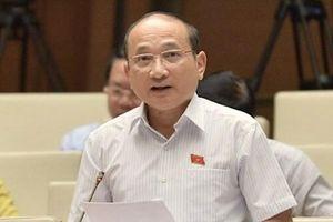 Alibaba, Rạng Đông, nước sông Đà xử lý kiểu 'mất bò mới lo làm chuồng'