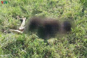 Người đàn ông lõa thể chết trên bãi cỏ của công ty ở Hải Dương