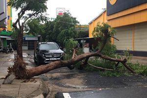 Sóng biển ập lên đường phố, đánh sập kè ở Phú Yên