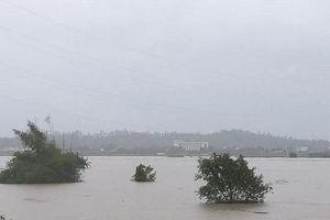 Quảng Ngãi: 1 người mất tích, 12 người bị thương do mưa lũ