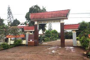 Yêu cầu UBND huyện Krông Pắc phản hồi vấn đề Báo Nhân Dân điện tử phản ảnh