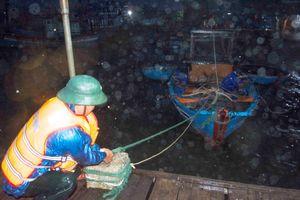 Trắng đêm cứu tàu trên sông Trà Bồng
