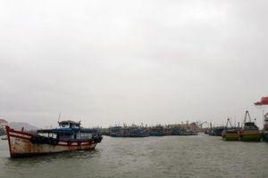 Bình Định: Sẵn sàng sơ tán 14.500 hộ dân tránh bão số 5