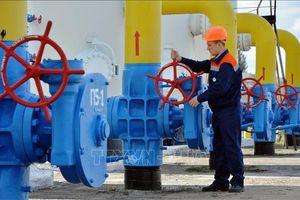 Nga sẵn sàng hạ giá bán khí đốt cho Ukraine