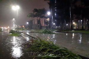 Từ đêm 31/10, Nghệ An đến Thừa Thiên - Huế có mưa rất to