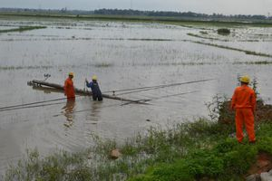 Gần 700.000 hộ dân bị mất điện trong cơn bão số 5 tại miền Trung