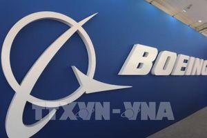 Thêm dòng Boeing 737NG phải ngừng bay