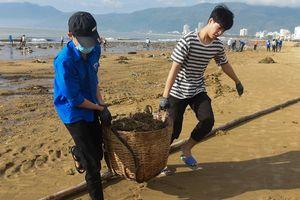 Bãi biển Bình Định ngập rác sau bão số 5