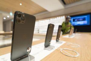 iPhone 11 chính hãng vắng khách ngày mở bán tại Việt Nam