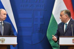 Tổng thống Nga Putin hứa bán khí đốt giá rẻ cho Ukraine