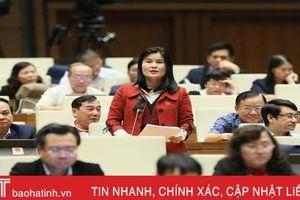 Đại biểu Quốc hội Hà Tĩnh: Xóa nợ thuế cần công khai, minh bạch, chịu sự kiểm tra, giám sát