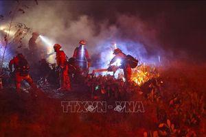 Bùng phát các đám cháy rừng mới ở bang California