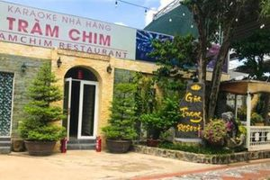 Chốt hạn cưỡng chế resort khủng ở TP.HCM