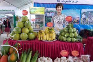 Khai mạc Hội chợ nông nghiệp và sản phẩm OCOP khu vực phía bắc