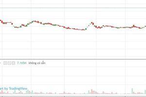 Cổ phiếu HVG của 'Vua cá một thời' tăng mạnh nhất HoSE tuần qua