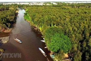 Bác tin TP.HCM, đồng bằng sông Cửu Long bị xóa sổ vào năm 2050
