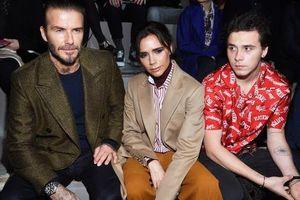 Vợ chồng Beckham lo ngại vì Brooklyn quá đào hoa