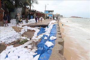 Ứng phó hiệu quả và khắc phục kịp thời hậu quả của bão, mưa lũ