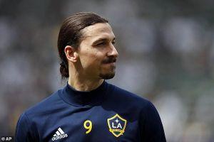 Ibrahimovic có thể trở lại châu Âu thi đấu