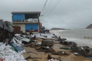Thiệt hại hàng trăm tỷ đồng do bão số 5