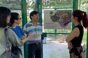 Thả mèo rừng quý hiếm về Vườn Quốc gia Cát Tiên