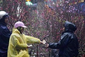 Tết Nguyên đán Canh Tý 2020 có thể đón rét đậm, rét hại
