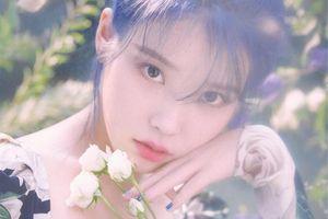 IU vừa thông báo ra mắt album, 'Love poem' đã nhanh chóng đạt Perfect All-kill