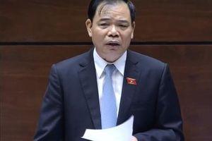 Bộ trưởng NN-PTNT 'mở hàng' trả lời chất vấn Quốc hội