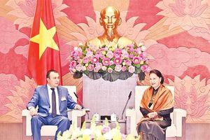 Chủ tịch Quốc hội Nguyễn Thị Kim Ngân tiếp Phó Chủ tịch Quốc hội Ác-mê-ni-a; đoàn đại biểu tỉnh Gưn-ma (Nhật Bản)