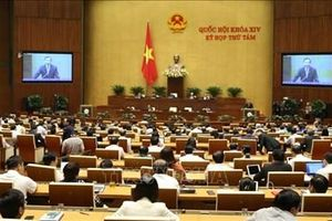 Quốc hội bắt đầu hoạt động chất vấn và trả lời chất vấn