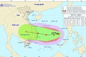 Thông báo cho 47.330 phương tiện với 243.063 người biết thông tin về bão số 6