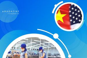 Việt Nam làm điều chưa từng có, thế mạnh tỷ USD ngang cơ hàng Mỹ
