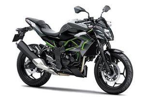 Chi tiết Kawasaki Z250SL ABS 2019 giá hơn 90 triệu