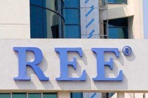 REE chính thức nâng sở hữu tại Phong điện Thuận Bình lên 49%