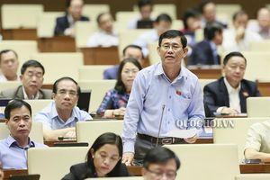 Chất vấn Bộ trưởng Nguyễn Xuân Cường về phát triển nguồn lợi thủy sản và xử lý vướng mắc trong khai thác, đánh bắt hải sản