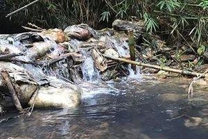 Những nguy cơ môi trường hiện hữu