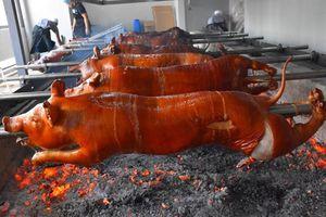 Đặc sản lợn sữa quay nguyên con của người Philippines