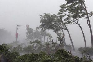 Xuất hiện cùng lúc 4 cơn bão lớn trên biển khiến bão số 6 diễn biến phức tạp