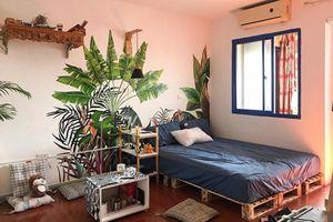 9X tài năng hô biến phòng trọ ổ chuột thành 'khu vườn nhiệt đới'