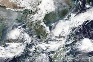 Vì sao Nakri có thể là cơn bão mạnh nhất của năm 2019?