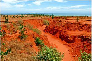 Suối hồng - công viên cát đỏ của Việt Nam