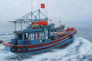 Quảng Ngãi hỏa tốc đề nghị hỗ trợ 6 tàu cá vào vùng biển Philippines tránh bão số 6