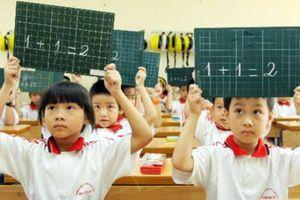 Xác suất, thống kê đưa vào dạy từ lớp 2, học sinh học những gì?