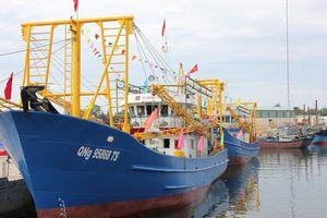 Vay vốn đóng tàu, ngư dân Quảng Ngãi lao đao trong 'bão nợ'