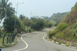 Đà Nẵng: Du khách phải đeo thẻ khi tham quan bán đảo Sơn Trà
